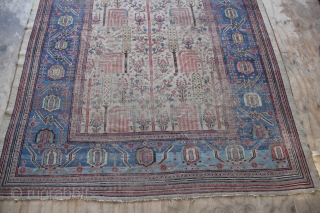 Fabulous Bakshiash tree of life carpet circa 1860. Whimsically drawn and with many charming, randomly placed dogs and/or goats. A beautifully abrashed main border of sky blue against a pale camel ground  ...
