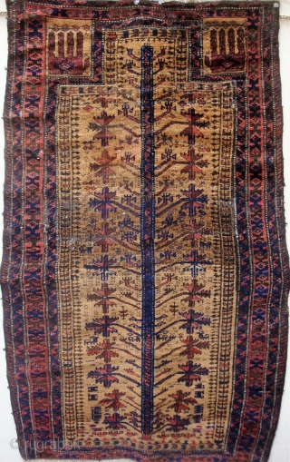Antique Baluch Tree and Hands prayer rug with unusual design features, curving branches. 32 x 51 inches.  A few small holes crudely darned; one repiled area discolored, as seen in first  ...