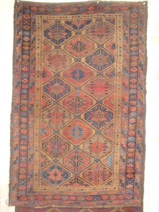 Baluch Gul Lattice Rug, symmetrical knots, possibly Bahluli, 33 x 61 inches.  Late 19th century.  These photos cannot convey the variety of vivid colors including a deep Aubergine (the lattice,  ...