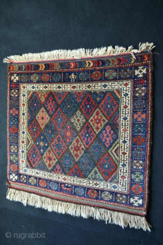 Beautiful United Colors of Jaf Kurds for sale