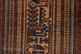 Beautiful Antique  Camelground Baluch small tent rug  circa 1900's 