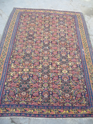 """Very Exceptional Senneh Kilim,supereb fine weaving,extra ordinary good dyes,all original without any work done,very supereb condition.Size 6'7""""*4'7"""".E.mail for more info."""