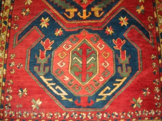 Antique Lenkoran Rug 2.54 m  x 144 m