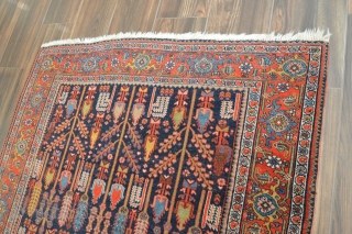 "Nice Bidjar with cypress pattern, wool on cotton, low even pile, 4'7"" x 6'11"". beautiful colors. Very decorative rug."