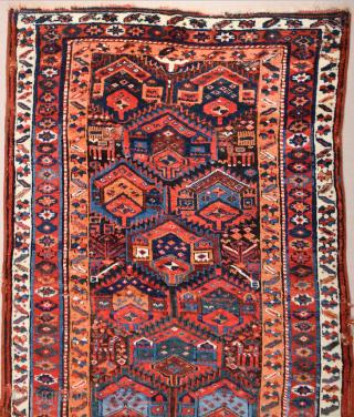 Middle of the 19th Century Sauj Bulack Rug Untouched Piece Size 127 x 201 cm