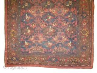 """Bidjar Halvai Persian knotted circa in 1905 antique, collector's item, 206 x 145 (cm) 6' 9"""" x 4' 9""""  carpet ID: K-57 The knots are hand spun lamb wool, fine knotted, the  ..."""