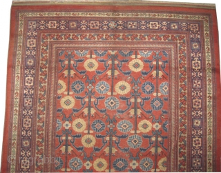 """Yarkand antique. Collector's item. Size: 250 x 162 (cm) 8' 2"""" x 5' 4""""  carpet ID: K-2256  Vegetable dyes, the black color is oxidized. At the left side border the knots  ..."""