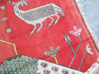 UIGHUR-KHOTAN EAST Turkestan in very good condition.  Epoca about 1920. Original carpet knotted in Xinjiang. Wool on cotton.  SIZE  cm. 251 x 150.  Other photos on request. Good look.  VENDUTO a FLORENCE (FIRENZE)   ...