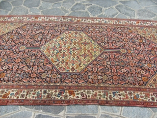 288 x 150 cm is the size of this antique BIDJAR-Kurdi. Knotted very fine. Bejinning XX century. Perfect conditions, and very beautiful colours. All original antique persian piece. ====  THIS PIECE HAS BEEN SOLD  ...