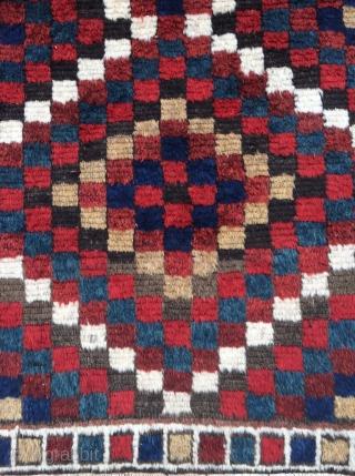 Bakhtiari Gabbeh rug - 3'11 x 5'6 - 119 x 159 cm.