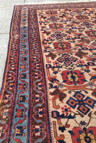 A beautiful Afshar with a scattered Mina Khani design. From the late 19th century, measures out to 4-2 x 5-11 ft. Some minor repairs, as can be seen in the photos provided.  ...