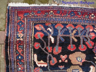 Kolyai/Kurd-- 4.9 x 6 ft 6 in. Plush single weft with s mix of cotton and wool foundation. Please call for condition Report. $25 UPS to lower 48. Check out  fresh  ...