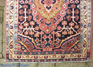Sarouk Fereghan Pushti.  21 x 31 inches. Fine. Thick. Minty with no apologies for condition. Little cutie.  $20 UPS to lower 48.