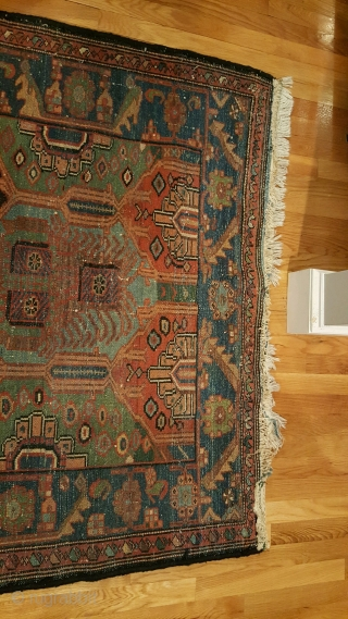 "4'6""x 6'8"" Armenian Bakhtiari with after market fringe."
