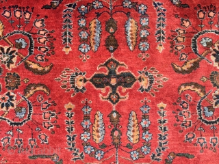 Mint 4'x 6' Antique Sarouk.