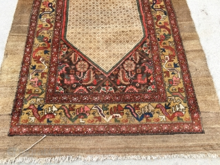"""1920's or older NW persian runner measuring 12'9""""x 4' with some low area's, some moth grazing, just been cleaned, pictures were taken on a cloudy day, Colors really pop in the sun."""