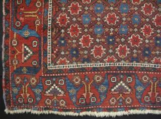 "Persian Afshar rug. Wool on cotton. Circa 1900. Size: 48"" x 57"" - 123 cm x 145 cm."