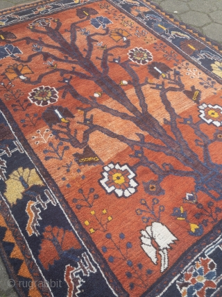 Gabbeh rug from Southpersia, beautiful drawing. Size: 210x160cm / 6'9''ft x 5'3''ft , age: circa 80 years old