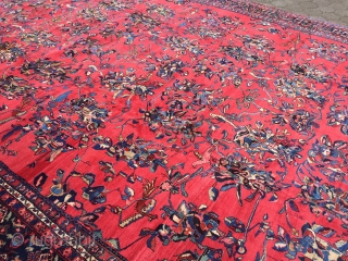 Oversize antique Persian Bakhtiary rug with lots of parrots and birds, large size: ca. 630x400cm / 20'7''ft x 13'2''ft