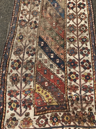 Antique Caucasian rug from an old German collection, good age, very nice colors and beautiful tree border. Age: 19th century. Size: ca. 227x111cm / 7'4''ft x 3'7''ft some condition problems but still  ...