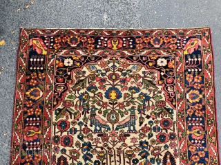 Colorful antique Persian Bakhtiary tree of life rug with birds, size: 195x145cm / 6'4''ft x 4'8''ft