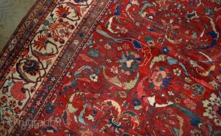 Handmade antique Persian Sultanabad rug 9.10' x 13' ( 303cm x 396cm) 1880s - 1B458