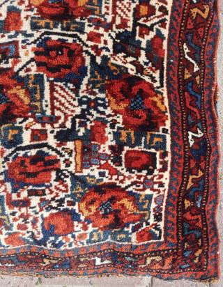 19.th century Persian Avshar sıze 63x75