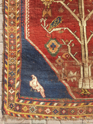 19.th century Persian Gabbeh sıze 132x162