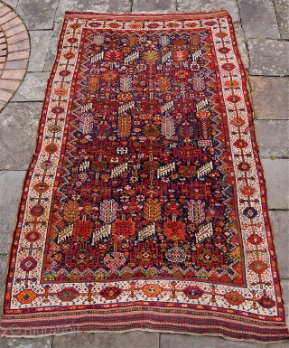 Super antique Shekralu Qashqai carpet. Circa 1880. 280 x 168cm. Lovely wool and colours. Decent to good pile all over with a small hole, a stain in the border and a couple  ...