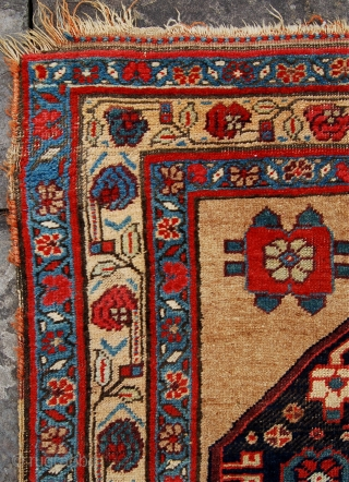 Lovely antique camel field Bijar rug. 19th century. Some minor wear but no repair. Floppy handle. 250 x 122cm.