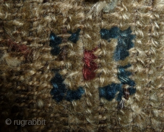 tibetan knot:    early colors from the plateau..