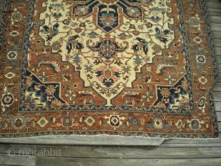 "Antique large Persian Heriz, Serapi quality (10' 1"" x 13' 5"") with uncommon ivory field and rust field (more brown than red), uncluttered design, very finely woven and very well maintained. Late  ..."