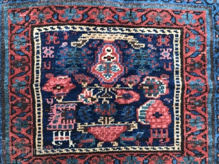 Large pile Kurdish bagface with some interesting iconography, and a few animals too, good deep pile generally, glossy wool, wear in the wider flatweave section as apparent in the images, all colours  ...