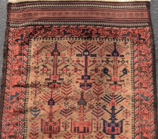 """camel ground Baluch rug with rare tree palmette variant, excellent condition with faltwoven ends. Inv# 19591, 2'11"""" x 5'2""""  www.peterpap.com"""