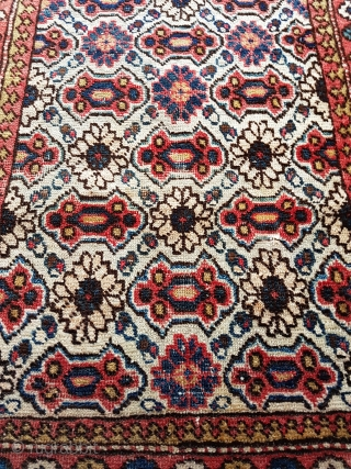 This is  a small Caucasian Seichour rug likely late 19th century 