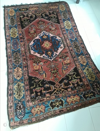 An antique village rug, probably NW Persia or Kurdish Bijar on wool. 190/117 cm. Perfect condition, original endings allover, high pile.