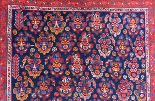 Antique Persian Afshar Rug All Colours Natural Circa 1880-90 Size.176x128 Cm