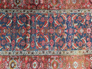 "Bidjar rugs and carpets have long had a mystique that makes them a ""man's rug"". Called the Iron rug of Persia they have an odd feature that few other rugs can match.  ..."
