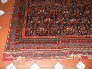 Ref 1446 Antique Afshar tribal rug circa 1880 or maybe earlier. 6'11 x 5'9 - 210 x 174.  In full unworn pile elaborate kelim end finishes have been conserved onto fabric.