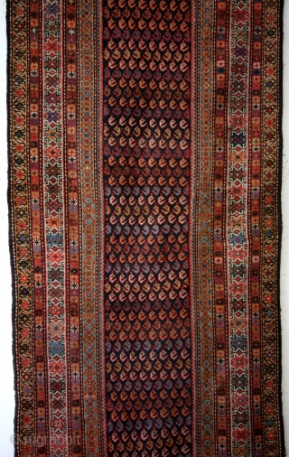 Talish, late 19th century, 115 x 290 Cm.  Great colors.  Headings intact, sides newly festonned.