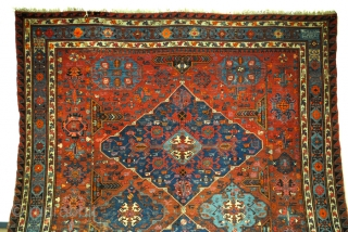 Large oversized Soumack. 500 x 320 Cm. 16.6 ft. x 10.6 ft. 