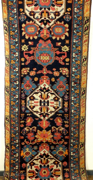Harshang motif, Kurdisch, Bidjar area, dark blue ground in contrast with the sparkling colors. Dragons in the soft yellow border. Nice tomado red.   305 x 100 Cm. 10 ft. x 3.3  ...