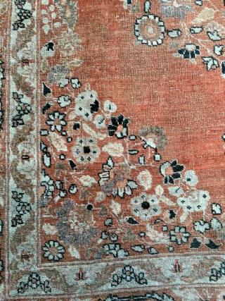 Tabriz, Hadji Jalili, late 19th century, 116 x 157 Cm.   An open field with beautiful apricot.