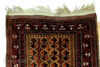 Wedding rug, original undyed camel wool field.  Wool on wool, weft wool and warp undyed goat wool.  Cotton kelim headings, tassels; warp, goat wool.  Belouc.  Kepse guls in the border.  In  ...