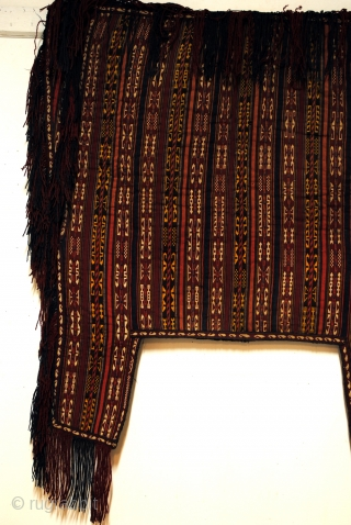 Horse blanket, Ersari Yomut mid 20th century. 