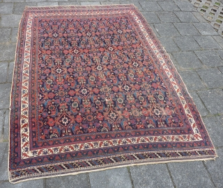"Afshar herati rug, 233  x 170  cm., 7'8"" x 5'7"", ca. 1900, with great, saturated colours. With wear and a kind of repaired 3 feet long slit (?) in the  ..."