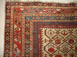 #6710 Shirvan antique rug