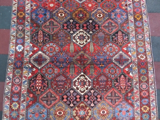 Iran Bahtiary rug wonderful colors and excellent condition all original size 3,08x2,15 cm Circa 1910-1915