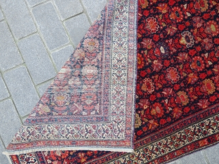 Malayer rug wonderful colors and very good condition all original 