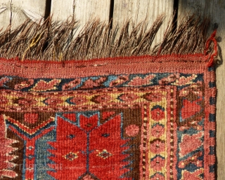 Ersari Beshir rug 19th cent.  143 x 275 cm. Warp: Wool and goat hair.  3 small old repairs (before 1965) as can be seen on detail images.  All images are from outside  ...